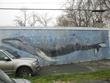Whale Painting on Bdg